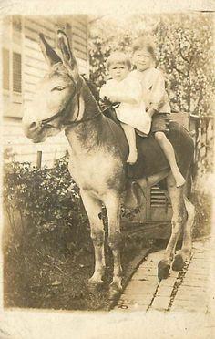 Kids on a donkey. c1912 Old Pictures, Vintage Pictures, Vintage Images, Old Photos, Baby Photos, Burritos, Vintage Oddities, Pony Rides, Vintage Children Photos