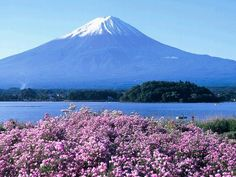 Mt. Fuji: Took train from Tokyo by myself (so overwhelming at the time!) to interview a couple for a home remodel article I was writing