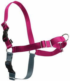 The Easy Walk Harness gently discourages your #dog from pulling while on a leash!