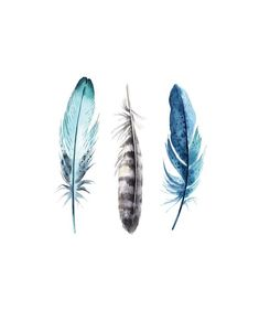 Feather watercolor art print featuring the digital feathers by tattoo Watercolor Feather, Feather Tattoo Design, Feather Wall Art, Pen And Watercolor, Watercolor Paintings, Tribal Turtle Tattoos, Feather Illustration, Watercolor Art Lessons, Art Inspiration Drawing