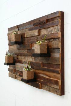 Растения на деревянной подложке.