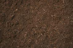 The mulch robs nitrogen myth - Root Simple