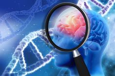 Early signs of Alzheimer's disease have been found in the brain area associated with memory formation and information processing. The study confirmed that two molecules assumed. Alzheimers, List Of Mental Disorders, Diabetes, Sleep Apnoea, Check Up, Jessica Smith, Aphasia, Traumatic Brain Injury, Schizophrenia
