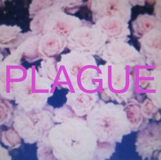 Plague – Crystal Castles – Listen and discover music at Last.fm