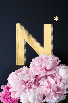 Flower Alphabet N by neon* fotografie as Poster in Aluminium Frame Alphabet Wallpaper, Name Wallpaper, Flower Alphabet, Alphabet Print, Poster Shop, Neon, Typography Poster, Mother Nature, The Incredibles