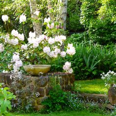 When we purchased our beloved Kiloren in NSW with its outstanding Walling garden, everyone said 'You live in an Edna Walling garden? How wonderful! Garden Front Of House, Love Garden, Back Gardens, Outdoor Gardens, Outdoor Rooms, Australian Native Garden, Traditional Landscape, White Gardens, Garden Styles
