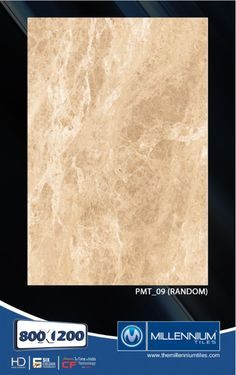 Millennium Tiles 800x1200mm (32x48) PGVT Porcelain Matt XXL Floor Tiles Series  - PMT_09