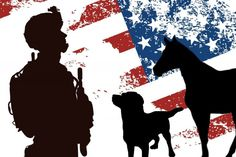 Do you support our Military Personnel and Veterans? Do you love animals?  Help us give back to those who risk their lives every day, so we can have freedom!  Hearts for Heroes (H4HUS) is a NonProfit 501(c) organization that provides FREE Animal Assisted Therapy Programs to Active-Duty Military, V...