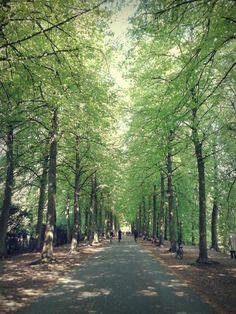 Promenade Münster