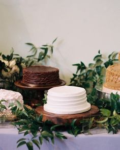 Jackie And Ross's Elegant Nashville Wedding With A Surprise Ending - The Cakes