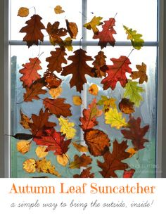 Autumn Leaf Suncatcher from Two of Everything