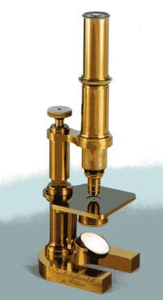 Mikroskop_von_Engelbert_&_Hensoldt_um_1870_Hufeisenstativ.jpg (1090×2000)