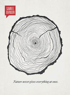 A natureza nunca dá tudo de uma só vez – Samuel Johnson