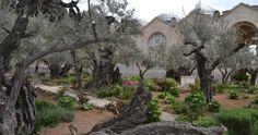 O τόπος στον οποίο προσευχήθηκε για τελευταία φορά ο Χριστός πριν τον μαρτυρικό θάνατο