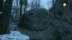 Schooltv: Nieuws uit de natuur; dino's en fossielen