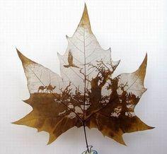 Dead wood leaf art