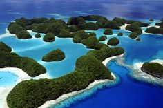 """ダーウィンが""""種の起源を出版するきっかけとなった生命の神秘島「ガラパゴス諸島」。 エクアドルの沖合約1000km地点にあるガラパゴス諸島は、120あまりの島々と岩礁が東西におよそ200kmという広範囲に広がっている生命の島。今回は、そんな生命の神秘を感じることができるガラパゴス諸島をご紹介いたします。 赤道直  エクアドル, カリブ・中南米 アイディア・マガジン「wondertrip」"""