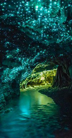 Waitomo Glowworm Caves near Otorohanga on New Zealand's North Island • photo: Kristin Pierce on Flickr