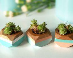 Macetas Mini geométricas juego de 3 de suculentas escritorio