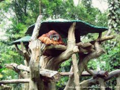 Indonesia Outdoor Decor, Travel, Home Decor, Viajes, Decoration Home, Room Decor, Destinations, Traveling, Trips