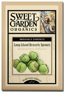 Long Island Brussel Sprouts - Heirloom Seeds by Sweet Garden Organics. $2.98. Cold-hardy - plant in early spring or fall. Compact variety produces abundance of sweet, crunchy sprouts with nice firm texture. Heirloom Seeds. 90 days to harvest. 50 seeds - open-pollinated so you can harvest seed and save for next year's planting!. This compact, semi-erect variety that will produce an abundance of sweet, crunchy sprouts with a nice firm texture. It does best in sunny conditions in w...