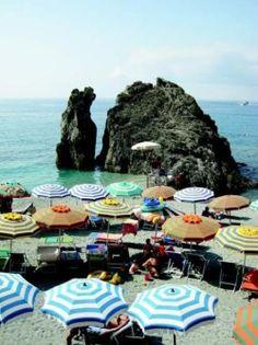 lifestyle, beach, marine