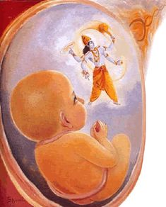 Parikshit was protected from attack of Brahmastra of Ashwatthama by Krishna when in womb Suka munii  was protected from attack of Maya by Krishna when in womb