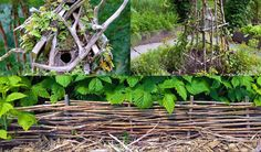 Creative garden features you can DIY for free using twigs, sticks, and branches. Ideas include trellises and plant supports as well as garden artwork