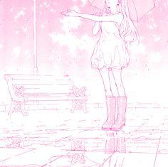 桜の花 : Photo
