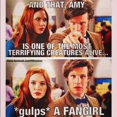 The most accirate description of a fangirl