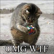 LOLcat omg wtf cat, rubik's cube