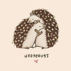 Sophie Corrigan adds clever wordplay to adorable animal illustrations. The UK-based freelance illustrator has released a series of drawings, some of which have already been made into greeting-cards, of cute animals and punny phrases. Animal Puns, Funny Animals, Cute Animals, Animal Humor, Animal Cards, Cute Puns, Cute Hedgehog, Hedgehog Craft, Hedgehog Meme