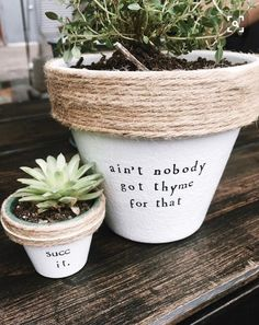 Plant Puns on Painted Potted Flower Pots - Adorable Gift Idea to Make Them Smile Herb Garden, Garden Art, Garden Puns, Vegetable Garden, Garden Whimsy, Big Garden, Family Garden, Easy Garden, Garden Design