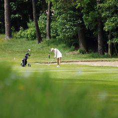 Hit the green  #Golf #Golfplatz #golfcourse #DGL #kramskideutschegolfliga #DGV #Damengolf #womensgolf #Fairway #Schlag #hamburgergolfclub #Falkenstein #HH #Hamburg #sonyalpha #sonyimages