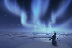 A penguin chick dreaming of what is beyond the stars. www.cassiopeiaart.com