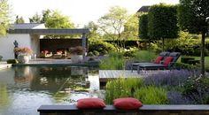 piscina natural capa