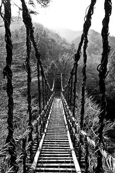 Over the Lya-Gawa River, it is a 45 meter long, 2 meters wide suspension bridge and is 14 meters above the water. It is a national folkloric property and is rebuilt every 3 years. Tokushima, Mono Japan, Japan Japan, Culture Art, Dangerous Roads, Suspension Bridge, Covered Bridges, Pathways, Black And White Photography