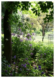 Millinger theetuin - Netherlands (this utterly charming garden was love at first…