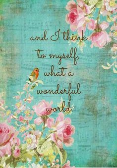 .... I think to myself...  what a wonderful World.....