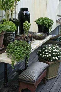 Great grouping of containers