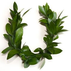 Show your appreciation for your significant other by getting them this one of a kind laurel wreath! It's very pretty and not very expensive so order now!