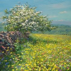 'Hawthorn and Buttercups, Ashleyhay' by Mark Preston. Part of his two man exhibition with Rex Preston, opening at gallerytop on 3 October 2015