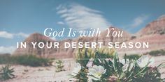 Though the heat may press on, there is peace in the soul-satisfying refreshment of His presence. He draws near, and He is enough.