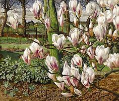 View Magnolias, 1938 By Stanley Spencer; oil on canvas; Access more artwork lots and estimated & realized auction prices on MutualArt. Stanley Spencer, Garden Painting, Painting & Drawing, Landscape Art, Landscape Paintings, Flower Paintings, Landscapes, Art Fund, Magnolia Trees