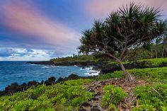 Wai'anapanapa - Looking down the east Maui coast.  Thanks for looking!