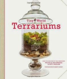"""Read """"Tiny World Terrariums A Step-by-Step Guide to Easily Contained Life"""" by Michelle Inciarrano available from Rakuten Kobo. Terrariums are a vibrant, unique way to inject a little greenery into any home. In Tiny World Terrariums, authors Katy a. Twig Terrariums, Garden Terrarium, Terrarium Centerpiece, Floral Centerpieces, Succulents Garden, Floral Arrangements, Urban Outfitters, Paludarium, Tiny World"""