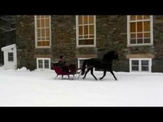 Weathermont Ethan sleigh ride - YouTube The newest portrait model from #BreyerModelHorses- a true #Vermont #Morgan! Shop for the model on BreyerHorses.com!