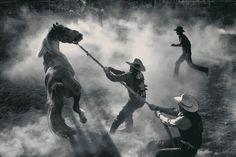Smithsonian Magazine Photo Contest: 10th Annual Competition Finalists Announced  Photo: Vente annuelle de chevaux à Miles City, Montana    Photographer: George Burgin, Billings, MT    Categorie: Americana