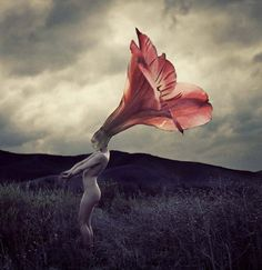 Brooke-Shaden-flower