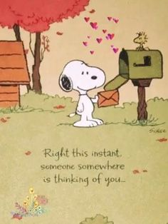 Thinking of you - Snoopy - Meu Amigo Charlie Brown, Charlie Brown Und Snoopy, Charlie Brown Quotes, Snoopy Cartoon, Peanuts Cartoon, Peanuts Snoopy, Snoopy Images, Snoopy Pictures, Peanuts Quotes